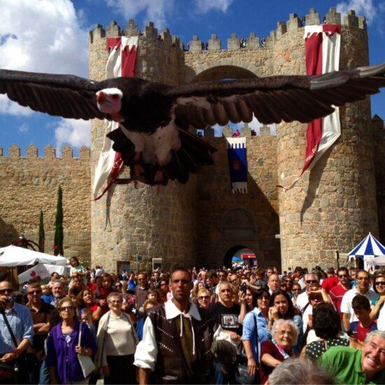 Jornadas Medievales Ávila