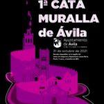 1ª Cata muralla de Ávila